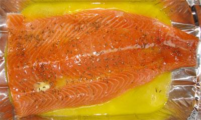 czech-salmon-3