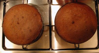 hungarian-choc-cake-4