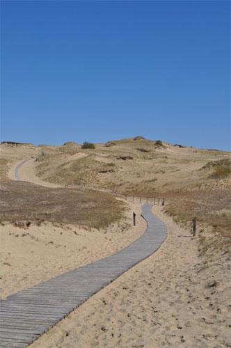 Dead Dunes Curonian Spit Lithuania